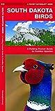 South Dakota Birds: A Folding Pocket Guide to Familiar Species (A Pocket Naturalist Guide)