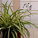 Automatic Flower Slow Drip Watering Hand Blown Clear Glass Plant Self Watering System Irrigation for Indoor Balcony House Lawn Water Container Small Potted Plant Waterer Decoration (Blue Ball)