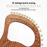 Lyre Harp,16 Metal String Harp Solid Wood Mahogany