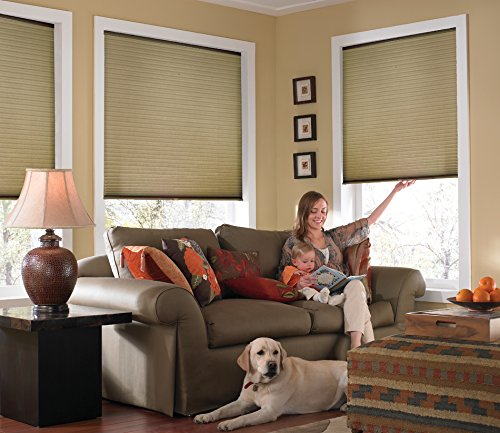 Windowsandgarden Custom Cordless Single Cell Shades, 24W x 37H, Amber, Any Size 21-72 Wide and 24-72 High