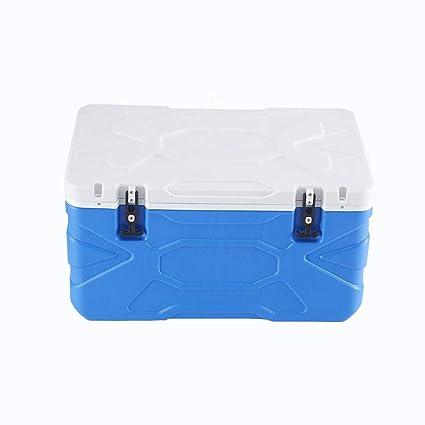LIYANLCX Refrigeradores portátiles con Capacidad de 55L y ...