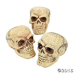 halloween skeleton skulls by spookville - Halloween Skeleton Head