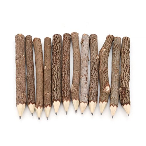 BSIRI Graphite Wooden Tree Rustic Twig Pencils Unique Birch of 12 Camping Lumberjack Party Novelty Gift by BSIRI (Image #2)