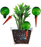 Plantpal Plant Watering Globes (2) Self Watering Automatic Watering System Holiday Watering Aqua Spikes Watering Stakes. This product really works, don't waste money on other cheap globes.