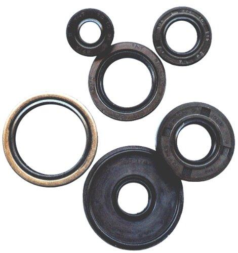 Winderosa Oil Seal Kit 822197