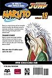 Naruto, Vol. 18: Tsunade's Choice