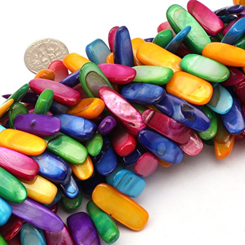 SHG Store 10x20-25mm Multi-colored Dyed Seashell Beads Strand 15