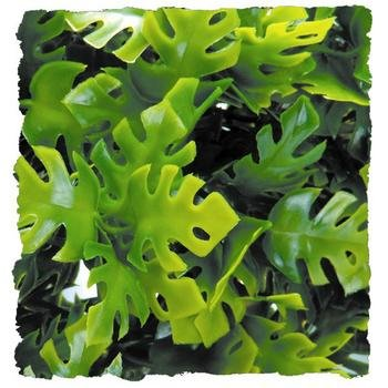 Amazon Phyllos Plant for Terrariums [Set of 2] Size: Small (0.71' H x 0.21' W x 0.46' L) by Zoo Med