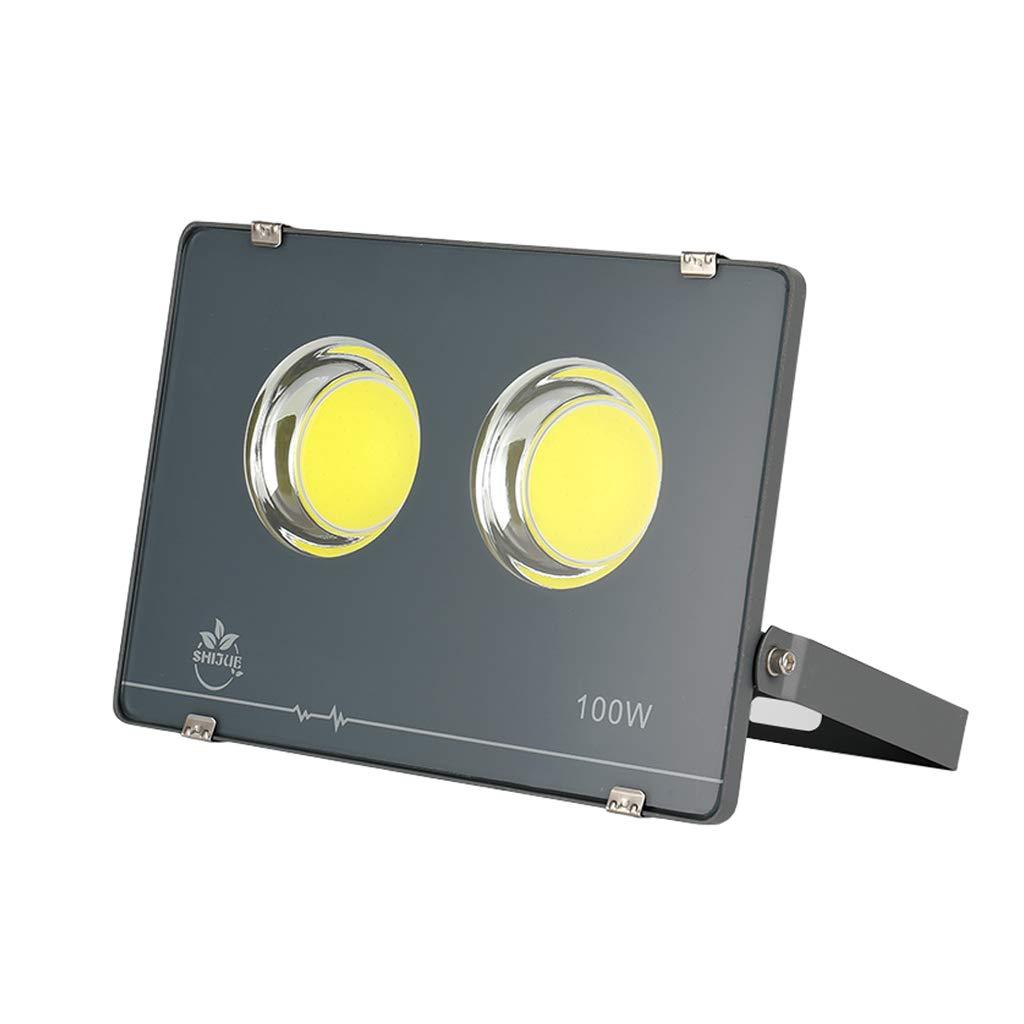Led Proiettore All'aperto Della Luce Di Sicurezza Del LED,Alluminio 6300K IP66 Impermeabile, (voltaggio   100W)