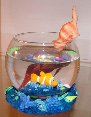 Decorating a betta fish bowl for Betta fish tank decorations