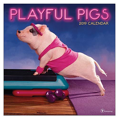 2019 Playful Pigs Wall Calendar