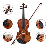 YANGEH 4/4 Solid Wood Acoustic Violin, Professional Handmade Violin with Hard Case, Bow, Rosin and String for Beginner, Antique Solid Wood