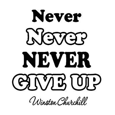 Never Never Never Give Up Wall Decal Winston Churchill Vinyl Wall Art Decals Quotes Inspirational