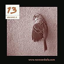 13, Volume 2: A Poetry Zine (www.novasankofa.com)