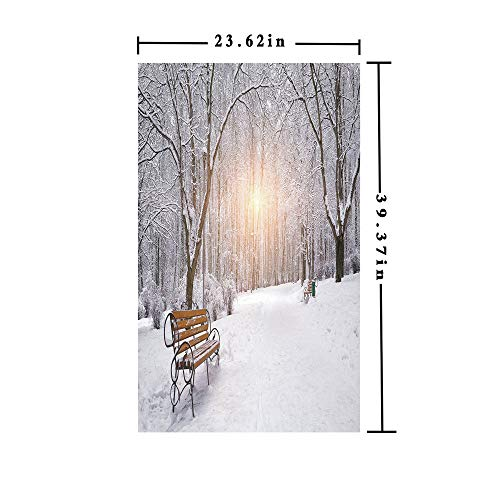 (Window Films Privacy Decorate 3D No Glue Static,Snow Covered Leafless Trees and Benches in The City Park Sunset Woodland Outdoors Decorative,W15.7xL63in,for Home Office with)