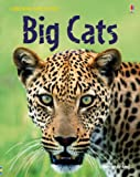 Big Cats (Usborne Discovery)