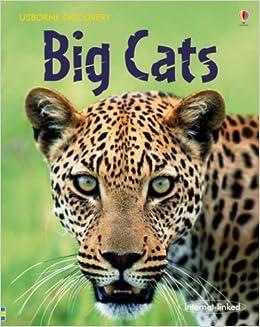 Big Cats Usborne Discovery Amazon Co Uk Jonathan
