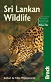 Sri Lankan Wildlife (Bradt Travel Guides (Wildlife Guides))