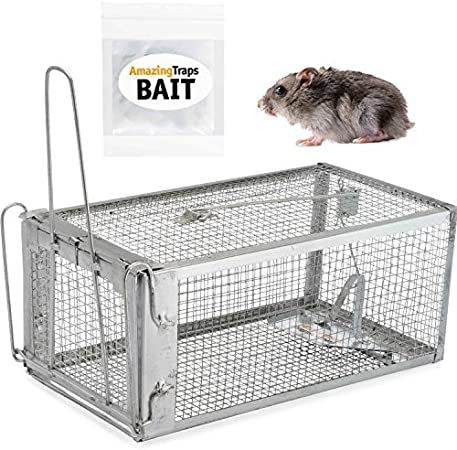 pest-table__image