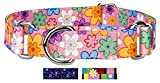 Country Brook Petz | May Flowers Martingale Dog Collar - Medium