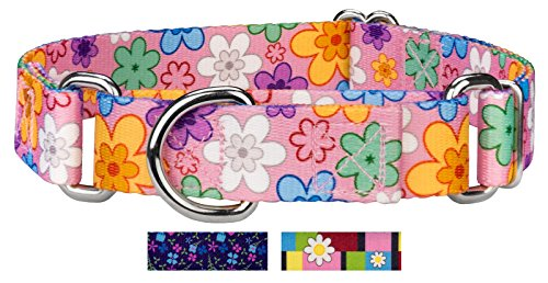 Country Brook Petz | May Flowers Martingale Dog Collar - Medium by Country Brook Design