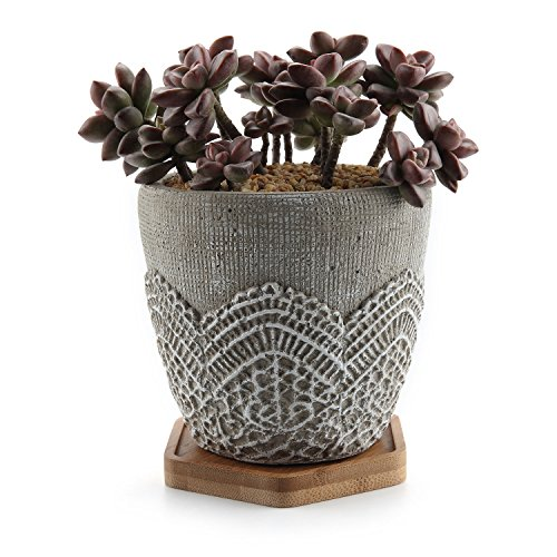 T4U 4.5 Inch Cement Lace Pattern Succulent Plant Pot/Cactus Plant Pot Container Planter Classic Design with Bamboo Tray - Pack of 1