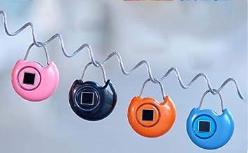 611258ddd67b Amazon.com: STRIDCJX Mini Smart Password Fingerprint Lock, Portable ...