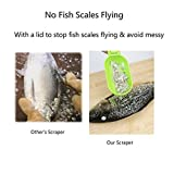 Fish Scraper Fast Cleaning Fish Skin with