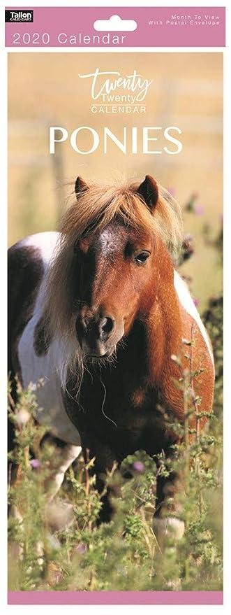 Mes delgado 2019 ver espiral atado caballo foto Calendario ...