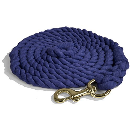 Intrepid International Lead Rope Cotton with Brass Snap Heavy Duty 10-Feet Lead Rope, (Lead Rein)