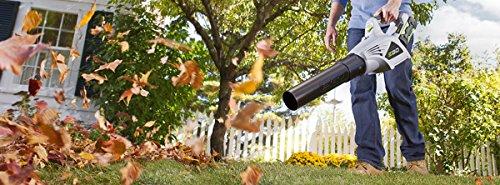 Lowes Leaf Blower