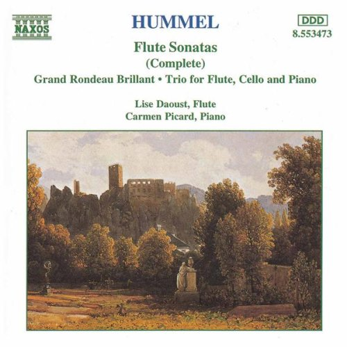 Rondo brillant in G major, Op. 126 (arr. for flute and piano): Grand Rondeau Brillant in G major, Op. 126: Adagio