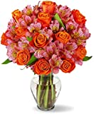 Benchmark Bouquets Radiant Roses and Alstroemeria, With Vase