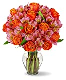 Benchmark Bouquets Radiant Roses & Alstroemeria, With Vase Deal