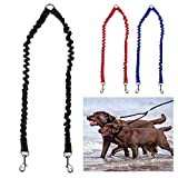PETBABY Bungee Double Dog Coupler Lead, No Tangle Two 2 Dog Leash and Splitter for Walking Puppy Small Medium Large dog (Black)