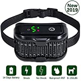 Nevoc Bark Collar, [Newest 2019] Dog Bark Collar for Large/Medium/Small Dog, Upgraded No Harm Shock Collar, Beep/Vibration/Shock to Anti Barking (IPX7 Waterproof, Rechargeable, 5 Levels, Black) Review
