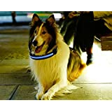 Dog Collar, New Bright Nylon LED Flashing Lights Make More Visable and Durable at Night for Your Dog