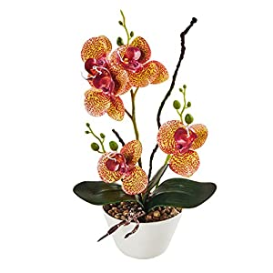 LOUHO Artificial Orchid Phalaenopsis Arrangement Flower Bonsai with Ceramic Vase for Room Table Decor 31cm in Height 33