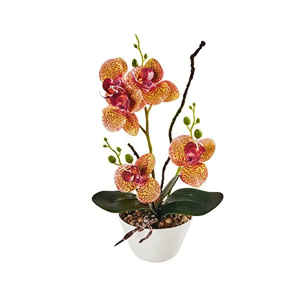 LOUHO-Artificial-Orchid-Phalaenopsis-Arrangement-Flower-Bonsai-with-Ceramic-Vase-for-Room-Table-Decor-31cm-in-Height