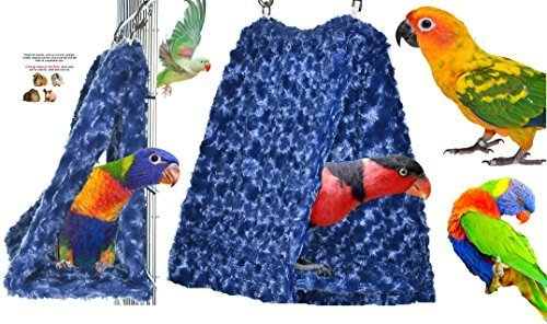 Cozy Parred Hideaway Tent Perfectly sized for conures, quaker parreds, pinkllas, ringneck parreds and birds of similar size Available as Single or Tent Hammock Combinations Made in the USA (Night Sky SINGLE) by Avianweb