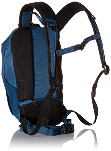 Daypack 626 12 Backpack Blue Steel Blue Casual cm PacSafe X12 Theft 43 608 Multicolour Anti liters Venturesafe Plum FqwRYzRBT