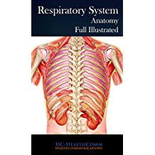 The respiratory system: Anatomy, Full Illustrated