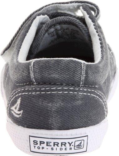 Sperry Kids HALYARD H&L CRIB - zapatilla deportiva de lona infantil azul - azul (marino)