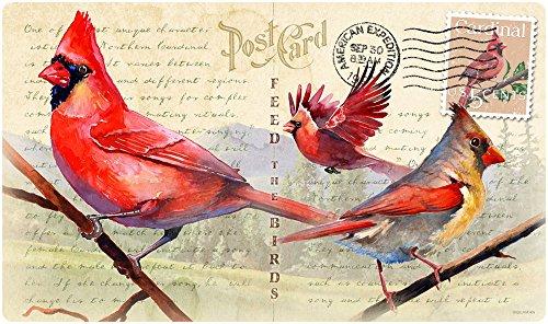 (Vintage Bird Series Tempered Glass Cutting Board (Northern Cardinal))