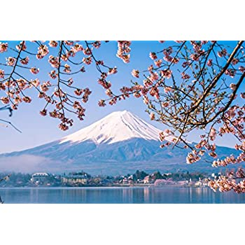 MOUNT FUJI BLOSSOM 24x36 POSTER NEW WALL DECOR JAPAN MOUNTAIN FLOWERS INTERIOR!!