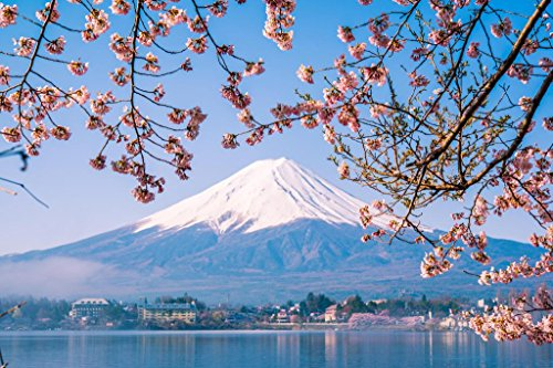Mount Fuji and Cherry Blossoms Photo Art Print Poster 24x36 inch