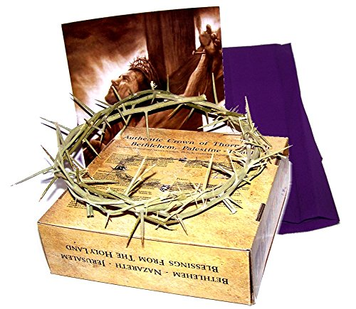 Crown Of Thorns: Life Size Authentic Crown (11-12