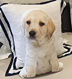 Cushion Co - Labrador Puppy Dog Shaped Pillow Pet 16' x 12'