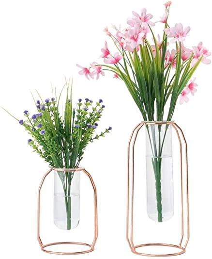 HYINDOOR Glass Vases Set of 2 Metal Flower Planter Terrariums Plant Glass Clear Decorations for Living Room, Rose Gold