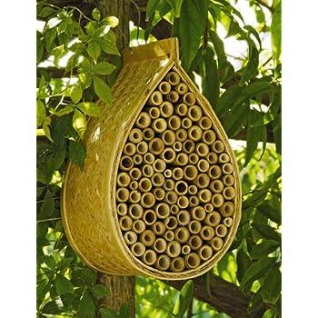 Amazon Mason Bee House Garden Outdoor
